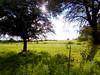 Atardecer (yajat54) Tags: nogales sonora picnic terrenos cabañas cabins nature naturaleza