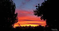 P1390465 (Christen Ann Photography) Tags: 2016 carterton christmasholidays december2016 landscape nature newzealand sun sunset wairarapa