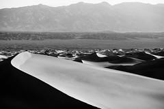 Eyes on the Prize (Thomas Hawk) Tags: california dv2011 deathvalley deathvalleynationalpark google googledeathvalleyphotowalk2011 mesquitedunes mesquiteflatdunes usa unitedstates unitedstatesofamerica bw desert sanddunes sunrise fav10 fav25