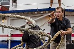 r_170903412_beat0053_a (Mitch Waxman) Tags: 2017greatnorthrivertugboatrace 42ndstreet buchanan donjon fireboatjohnjharvey hudsonriver midtown millerslaunch mistert newyorkcity newyorkharbor tugboat workingharborcommittee newyork