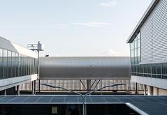 Ein guter Tag zum Fliegen (thewhitewolf72) Tags: amsterdam schiphol airport