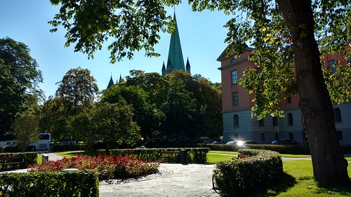 Trondheim City Walk with the expats #trondheim