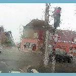 2017-09-08drops (25)rain f thumbnail