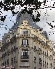 Architecture ♥ (Little Queen Gaou) Tags: paris architecture jardins jardin garden roof toits bâtiments immeubles vintage old victorian photography photographie