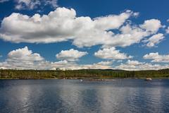 IMG_3085-1 (Andre56154) Tags: schweden sweden sverige see lake wasser water ufer wolke cloud himmel sky landschaft landscape forest