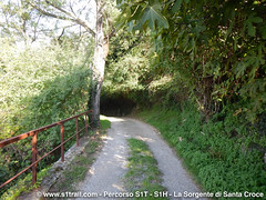S1T-S1trail-la-corsa-della-bora-anello-sorgente-santa-croce__0042