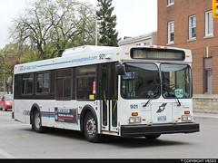 Winnipeg Transit #921 (vb5215's Transportation Gallery) Tags: winnipeg transit 1996 new flyer d30lf