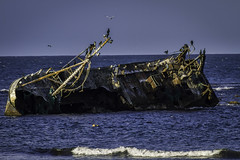 The Sovereign (David C Laurie) Tags: shipwreck aground sovereign bf380 fraserburgh inverallochy cairnbulg fishing