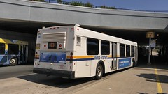 Very few remaining (mackay_kyle) Tags: hfxtransitroute63 bridgebusterminal transit burnsidetransitcentre canadabus canadiantransit publictransit halifaxtransit d40lf newflyerindustries newflyerbuses newflyerd40lf newflyer bridgeterminal cummins isl cumminsisl hfxtransitbus1043 1043