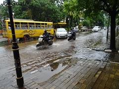 Flooded road (joegoauk73) Tags: joegoauk goa water rain