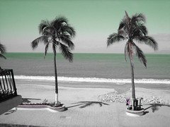 Tinted beach view