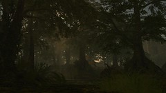 Standing at the feet of giants (alexandriabrangwin) Tags: alexandriabrangwin secondlife 3d cgi computer graphics virtual world photography avagreen ddraig home sim forest elven eerie spooky wilderness glade sunbeams godrays smokey dusty mist fog tall ancient trees canopy dark evening ferns grass ruins redwoods