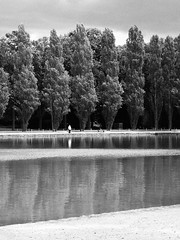 Alignment (DiluJ) Tags: bnw blackandwhite monochrome noir grain nature park lake france alone lonely man wild wood outdoor reflection tree forest sky tones life visual omd m43