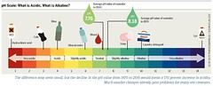 pH Scale: What is Acidic, What is Alkaline? (boellstiftung) Tags: oceanatlas climatechange pollution sea ocean heinrichboellfoundation maritimeindustry shippingindustry overfishing ecosystem biodiversity