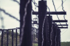 Iron Curtain (tomas.jezek) Tags: history ironcurtain 20thcentury border fence cizov czechia