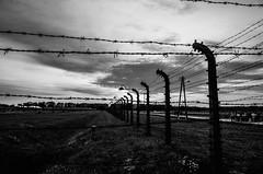 Heures sombres de l'histoire - Auswitch (Chris, photographe de Nice (French Riviera)) Tags: auswitch campdeconcentration mort guerre noiretblanc blackandwhite histoire history