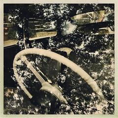 Une fusion de deux mondes... (woltarise) Tags: reflets arbre voiture intérieur montréal plateau volvo444