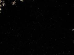 Perseidi 12agosto2017 (motonya) Tags: stelle cielo stellato stella cadente perseidi notte spazio