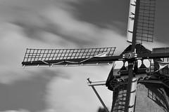 """Windmill """"Zeldenrust"""""""