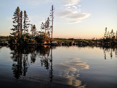 Reflections on Deadman's Pond (Orion 2) Tags: deadmanspond canoeing reflections borealtrees rocky pond lake bog wildberries spottedalynx newfoundlandandlabrador canada