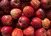 Pomme, pomme, pomme... (Jacq-R) Tags: concret etrevivantanimalvégétal végétal fruitgraine pomme