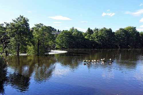 River Derwent at Belper