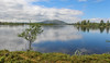 img_5299_36080289240_o (CanoeMassifCentral) Tags: canoeing femunden norway rogen sweden