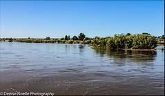 Miscellaneous-69 Rio Grande River (Denise Noelle Photography) Tags: riogranderiver newmexico