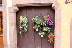 Vacances_0201 (Joanbrebo) Tags: ribeauville grandest francia fr cityscape hautrhin alsace porta puerta door canoneos80d eosd efs1855mmf3556isstm autofocus