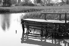 Old Pier (superzookeeper) Tags: 5dmk4 5dmkiv hk hongkong canoneos5dmarkiv ef2470mmf28liiusm oldpier pier water monochrome blackandwhite river namsangwai reflection eos yuenlong bnw digital village landscape