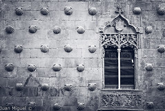 Casa de las Conchas (Juan Miguel) Tags: bw bn blackandwhite blancoynegro castillaleón españa europa europe juanmiguel panasonicfz200 salamanca spagne spain spanien architecture arquitectura building edificio fotografíaurbana urban urbana