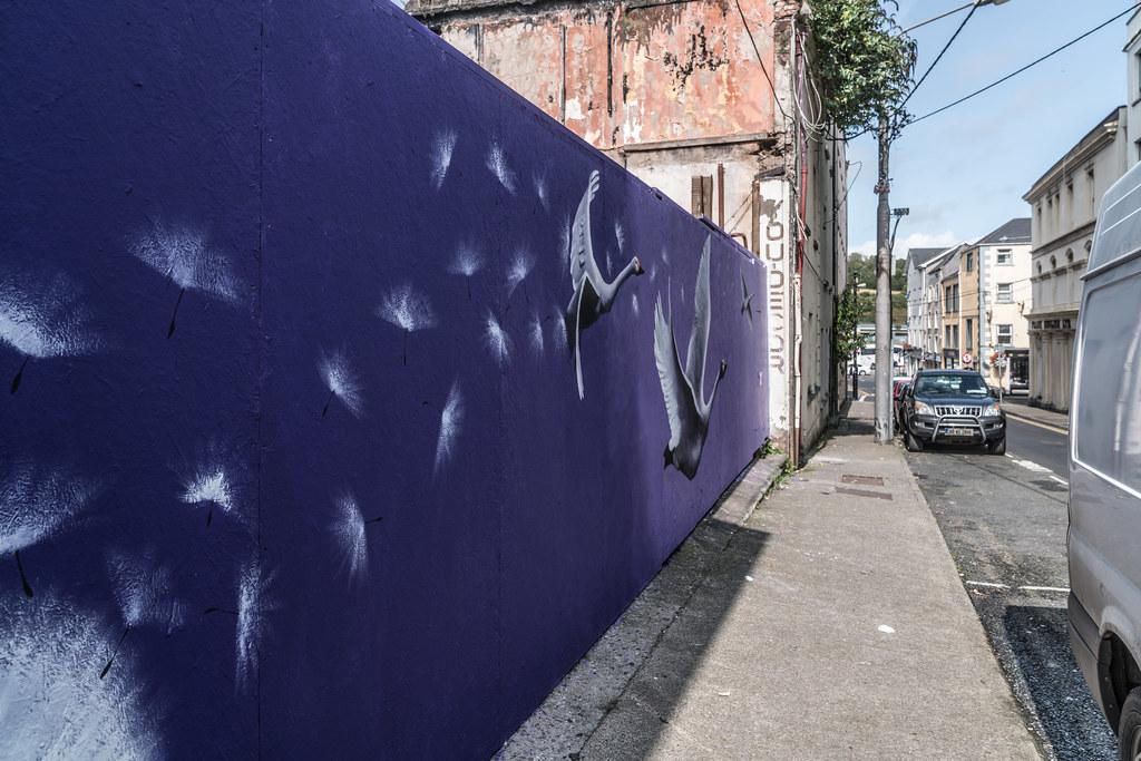 WATERFORD WALLS [AN ANNUAL INTERNATIONAL STREET ART FESTIVAL]-132032