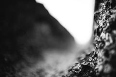 Unending (Ir3nicus) Tags: xanten nordrheinwestfalen deutschland de apx archäologischerpark germany ancient antike antiquity altertum römisch roman wasserleitung waterconduit afsnikkor35mm114g nikon d700 dslr fullframe fx bw blackandwhite schwarzweis