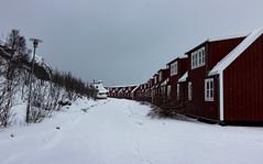 IMG_2512 (alessandro orfanù) Tags: norway lofoten vesteralen hurtigruten winter snow northernlight