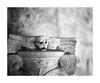 Un petit Diable (Oeil de chat) Tags: nb bw monochrome film pellicule argentique 35mm canon a1 ilford fp4 détail sculpture chapiteau visage diable démon flou bokeh