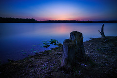Fantasy (Pavel Cervenka Photographer) Tags: fantasy evening magical lake water shore dusk sunset wood czech republic sterk nd pavel cervenka canon eos100d efs1018 ultrawide