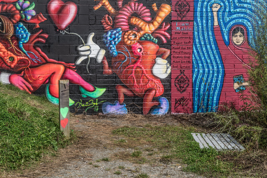 WATERFORD WALLS [AN ANNUAL INTERNATIONAL STREET ART FESTIVAL]-132248