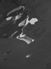 B&w (carlos_ar2000) Tags: agua water monocromo monochrome reflejo reflected reflection distorsion distortion surface pattern onda wave buenosaires argentina