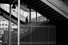 Between the bars (pascalcolin1) Tags: paris13 homme man métro subway barres bars photoderue streetview urbanarte noiretblanc blackandwhite photopascalcolin