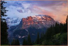 Coucher de soleil sur le massif de l'Eiger (jamesreed68) Tags: mountain eiger épieu ogre suisse schweiz alpes alps paysage nature oberland berne grindelwald canon eos 600d