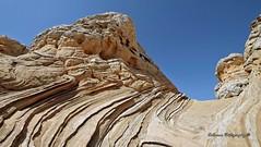 2017-04-12 White Pocket (Kalaman Travel) Tags: whitepocket arizona page kanab vermillioncliffs pariaplateau