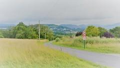 Loiu, Biscay, Bilbao, Basque Country, Northern Spain (1) (Masakino Fuquini) Tags: biscay loiu bilbao spain basquecountry