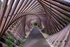 Les Jardins Mallet-Stevens (musette thierry) Tags: lesjardinsmalletstevens musette thierry d600 28300 symetrique bois art parc green jardin