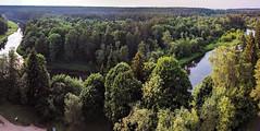 Forest observation platform, Anykščiai, northeastern Lithuania