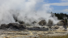 Grotto Geyser_27A0927 (Alfred J. Lockwood Photography) Tags: alfredjlockwood nature landscape grottogeyser eruption morning summer yellowstonenationalpark wyoming steam