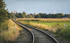 Four (Paula Darwinkel) Tags: railroad railway train traintrack track landscape road netherlands scenery sunset summer nature