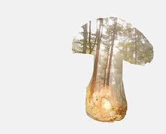 Onddoa (June Ekaina) Tags: perretxikoak seta photoshop dobleexposición bosque onddo hongo