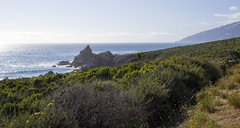 Highway 1 view (LunarKate) Tags: us usa united states america unitedstates unitedstatesofamerica west coast westcoast cali california central beach beauty beautiful landscape seascape pacific ocean water highway 1 highway1 nikon d40 dslr may 2016 solo travel traveling