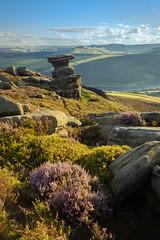 Salt Cellar - Derwent Edge (JamesPicture) Tags: derbyshire derwentedge landscapephotography peakdistrict england unitedkingdom gb saltcellar heather