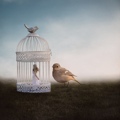 Bird and the Birdcage (laurawilliams▲) Tags: birdcage surreal laura williams cage nature fairytale fog smoke clouds bird giant girl model grass field sky